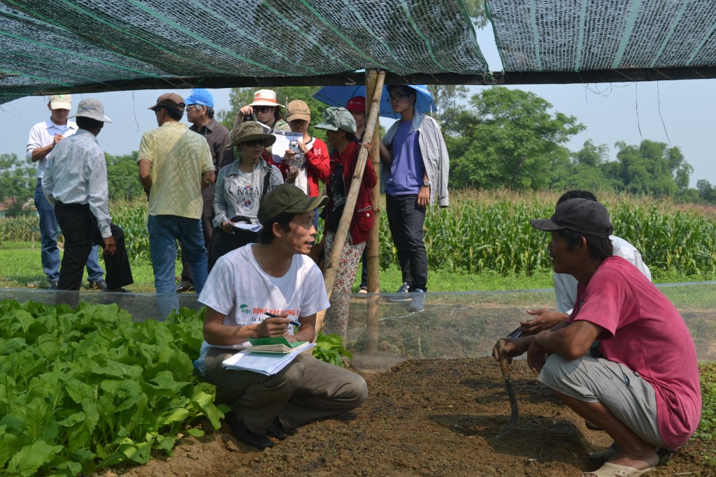 Group exchanges in the vegetable garden of Nguyen Ba household - Thu Bon Tay village, Duy Tan commune