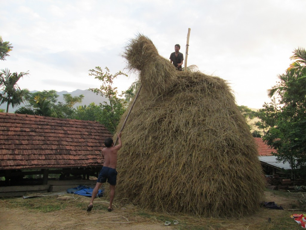 Photo: People know how to develop a stack of straw