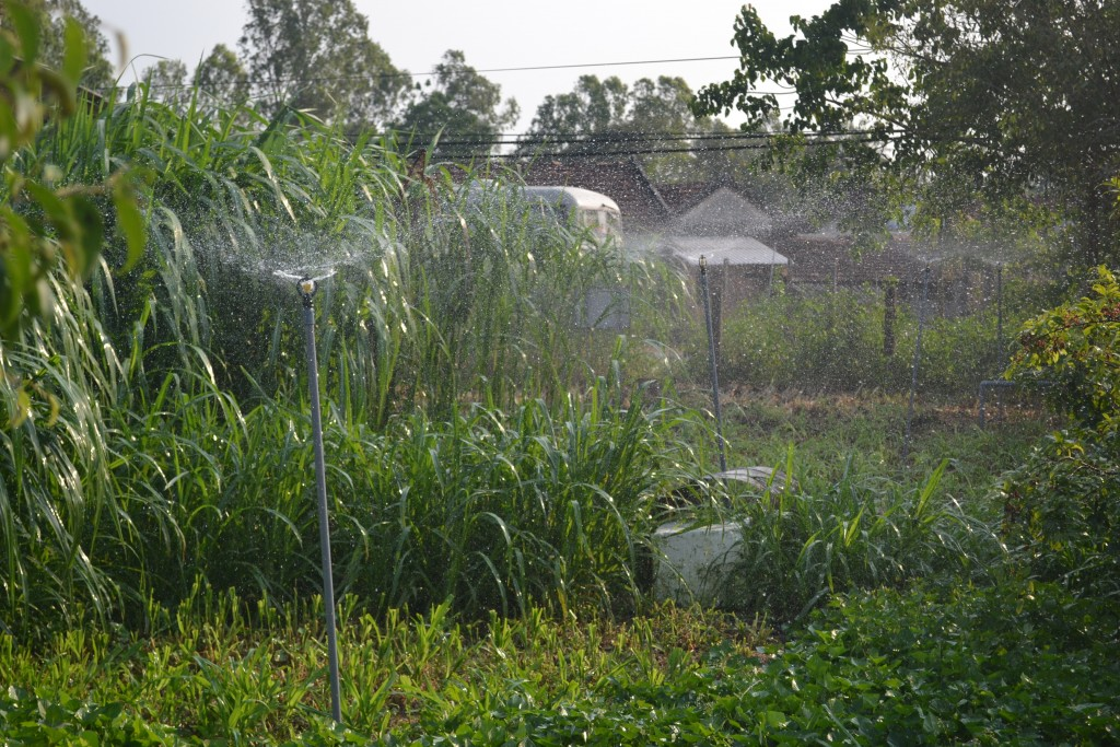 Water saving irrigation system